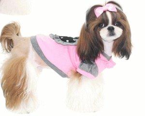 画像3: 愛犬服【メール便OK】秋冬物/キュートなフリルTEEピンク【Puppyzzang】2011