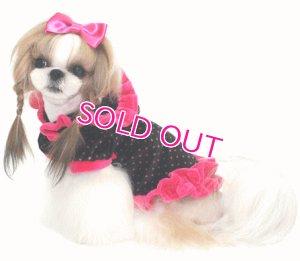 画像3: 愛犬服【メール便OK】新作/水玉ベロアのフリルフーディ【Puppyzzang】2012