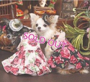 画像5: 【再入荷】犬 服/愛犬/新作Rose DressII ブラック/コカパパ[メール便無料]