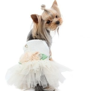 画像5: PUPPYANGEL/新作Swan Tutu Dress/PA-DR120【 送料無料】