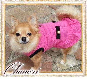 画像4:  【2480円】【セール】【犬 服】【メール便OK】NEW カメリアのcocoワンピース【ZOOBICO】