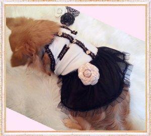 画像4: 【犬 服】【新作】【2380円〜】【メール便OK】【金ボタン】Coco調 キャミワンピ(Doggy Star)