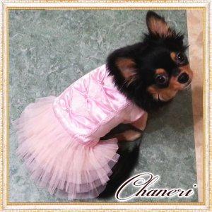 画像2: 犬 服【セール】【2480円】【新作】トリプルリボンのチュチュフリルドレス/Petstyle