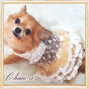 画像1: 犬 服【セール】【2480円】【新作】クリームレースフリルドレス/Petstyle