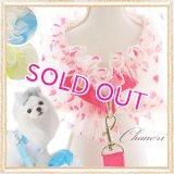 【お試し価格】【1480円】【メール便OK】LOLLYPOPフリルメッシュハーネス&リード/ピンク/ブルー/グリーン