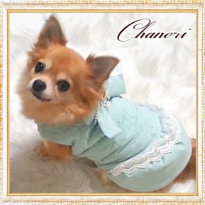 画像3: 【セール】【冬】【愛犬服】ラグジュアリーパールリボンコート【ZOOBICO】【メール便OK】