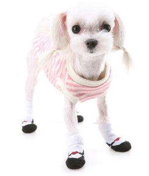 画像3: 【愛犬】【Puppyangel】ストラップバレエシューズ風 ソックス【メール便OK】