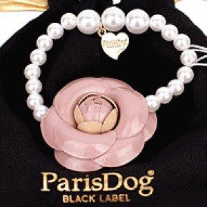 画像1: 【犬用】【アクセサリー】カメリア&パールのネックレス【Parisdog】【メール便OK】