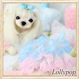 【新作】【春夏】【Sale 2480円】【犬 服】パフ袖のレースチュチュドレス【Lollypop】【メール便OK】