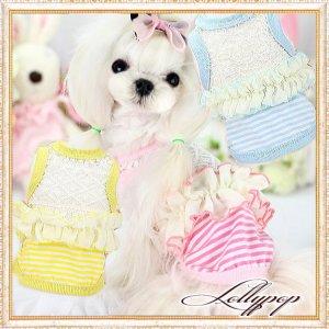 画像1: 【新作】【春夏】【Sale 1480円】【犬 服】レース&フリルのボーダーTEE【Lollypop】【メール便OK】