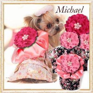 画像1: 【新作】【犬 服】【Sale】【1680円】【帯飾り付】オシャレゆかた【Michael】【メール便OK】