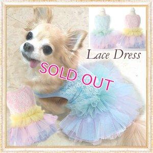 画像1: 【新作】【Sale】【1980円】【犬 服】豪華なレーシーチュチュドレス【メール便OK】