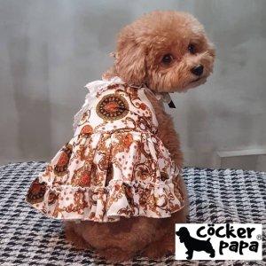 画像1: 愛犬の服【春夏新作】チェーンラグジュアリードレス【cockerpapa】コカパパ