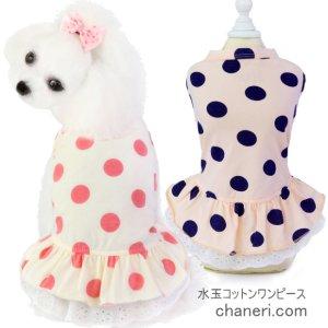 画像1: 犬 服 犬の服 ドッグウェア 水玉プリントの裾レースワンピース【メール便可】